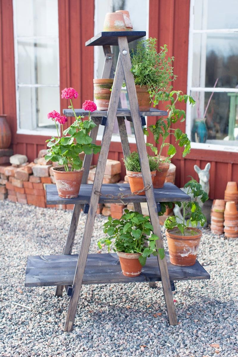 Hyllplanen är lösa plankor som går att flytta och stegen går att fälla ihop så att den tar minimalt med plats.