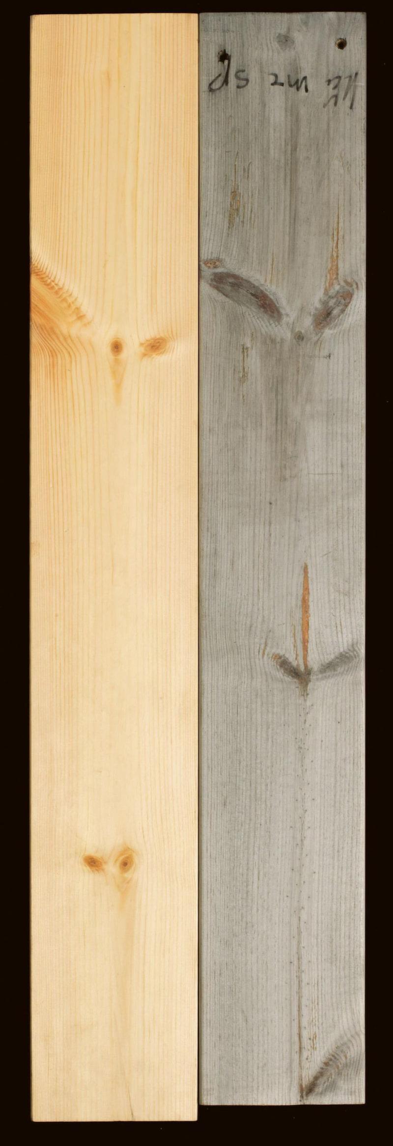 LÄRKTRÄ<br>Kallas ofta sibiriskt lärkträ och är underhållsfritt. Får en vacker grå färg med åldern.