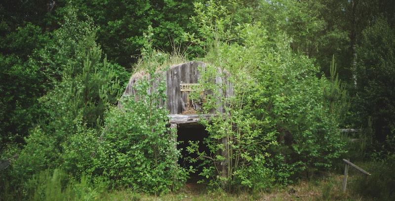 """Vegetationen tar över mer och mer... Här något som hette """"Gruvan""""..."""