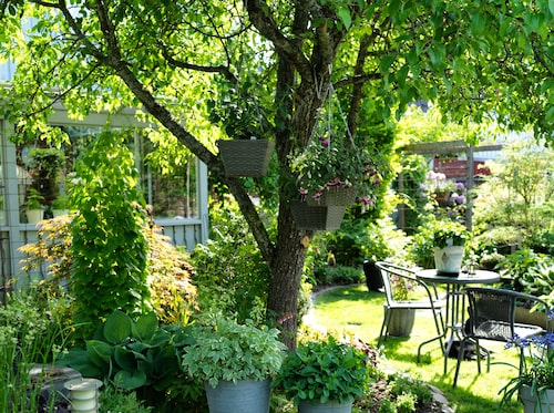 Med smart planering samsas här växtlighet, bostadshus, uthus, garage och garageuppfart – allt på bara 550 kvadratmeter.