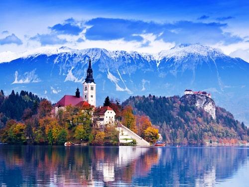 Den pittoreska sjön i staden Bled.