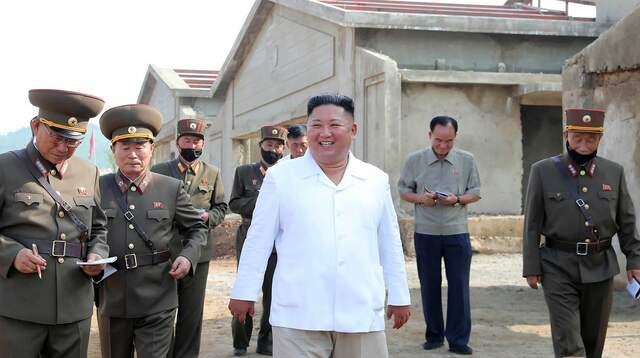 Nordkorea Corona Hinrichtungen