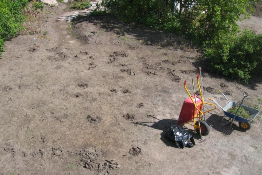 STEG 1. Grunden viktigast.<br>Ju bättre underlaget är förberett, desto finare kommer din gräsmatta bli. Och desto mindre underhåll kommer den att kräva. Den tid du lägger ner på förarbetet kommer du att få igen flera gånger om.<br>Marken ska vara fri från ogräs, rötter, kvistar och stenar. Använd inte jordfräs om du har gott om fleråriga ogräs för då slår den rötterna i småbitar, och du kommer att få mer ogräs. Det rena underlaget är livsviktigt för den nya gräsmattans etablering. Läggs den ut på ogräsbemängd jord eller på gammal gräsmatta kommer den nya gräsmattan dö.