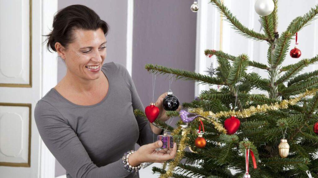<p>Julgran är både fint, trevligt och mysigt. Men se upp, den kan förstöra dina växter!</p>