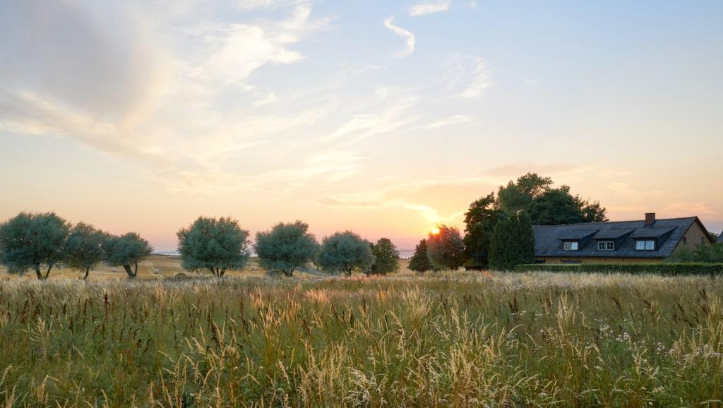Landsbygden i nordvästra Skåne.