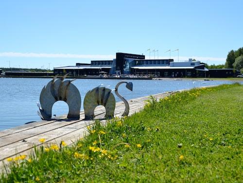 Kumla sjöpark har både bad och picknickplatser.