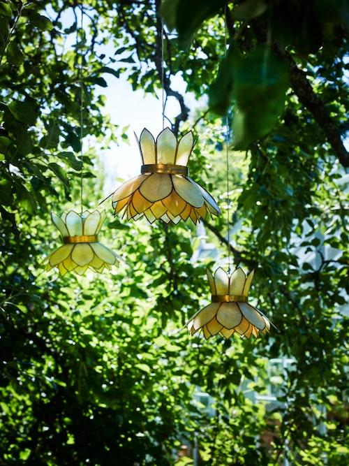 I äppelträdet hänger flera olika solcellslampor som lyser upp trädet på kvällen.