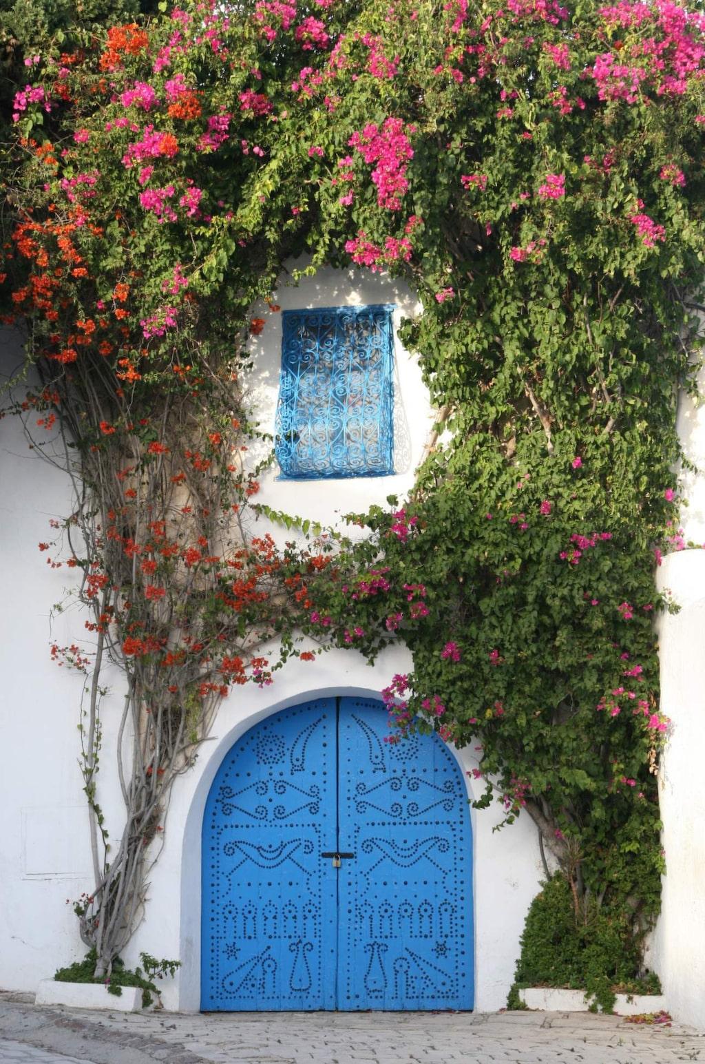 Sidi Bou Said ligger högst upp på en klippa med utsikt över Medelhavet.