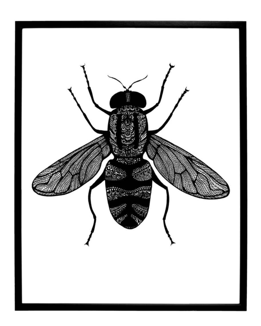 Fluga. Illustration Syrphidae av Johanna Gartmyr, 250 kronor, Rädda barnens webbshop.