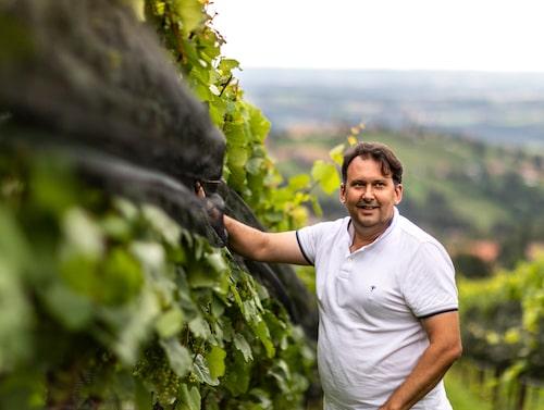 Stefan Langmann driver en av de större vingårdarna i västra Steiermark och har lång erfarenhet av att tillverka vin i det regniga klimatet.