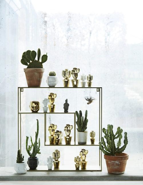 Glimrande. Våra hem fortsätter att glänsa med lyxiga metaller. Allt på bilden från Madam Stoltz.