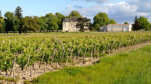 Vinvänner från hela världen kommer till Bordeaux