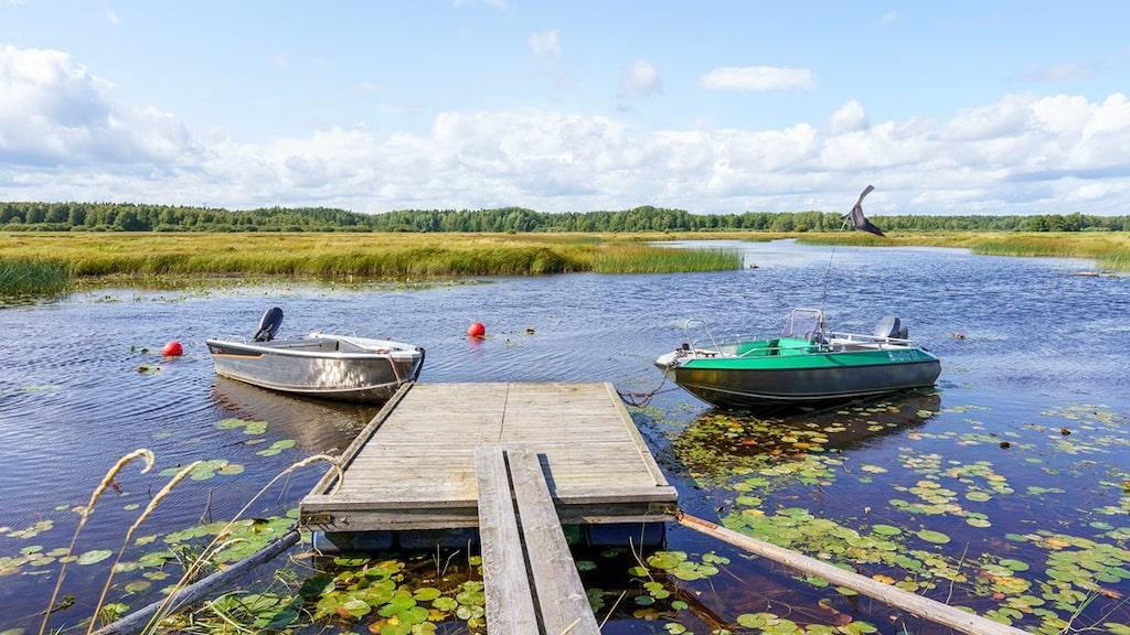 Här finns också möjlighet till båtliv.