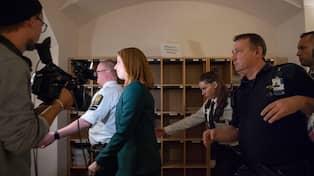Sverige pa ratt vag enligt statsministern