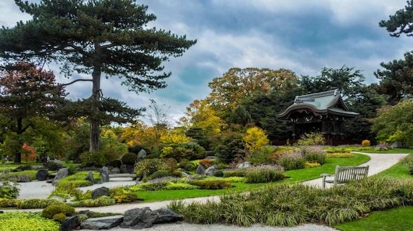 Kew Gardens, den kungliga botaniska trädgården i sydvästra London, som numera är upptagen på Unescos världsarvslista.