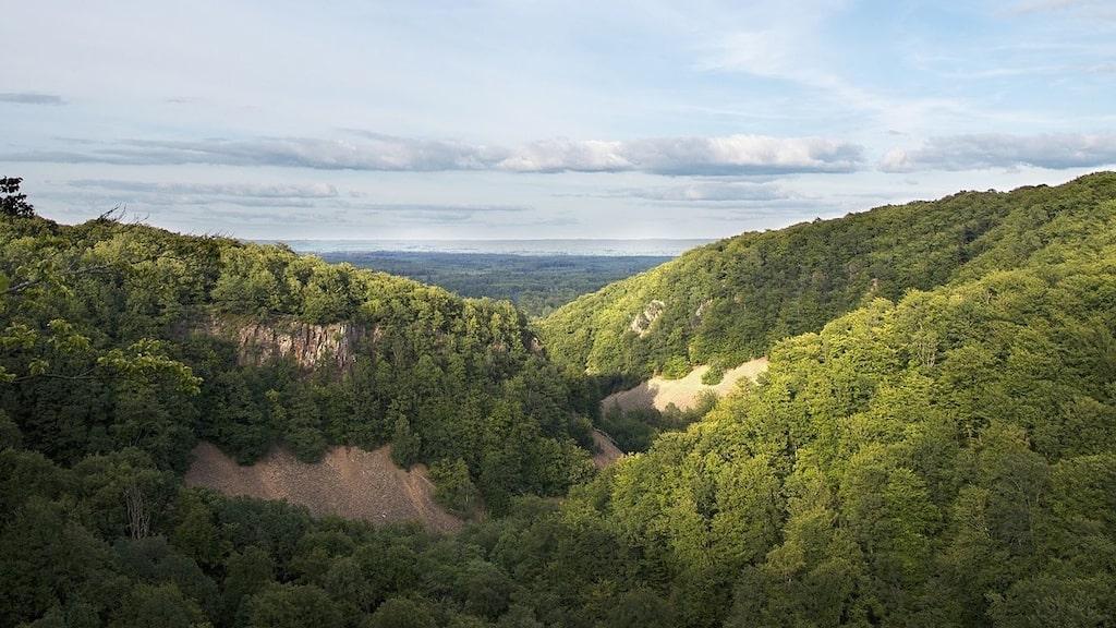 Söderåsens Nationalpark kallas ofta Skånes vackraste naturupplevelse