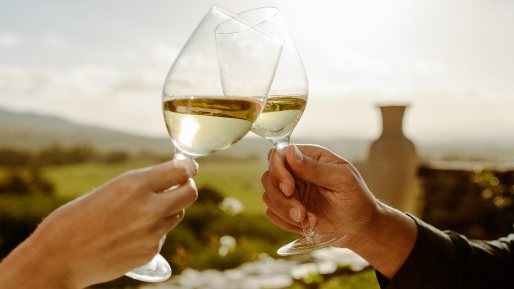 Expertjuryn bakom Allt om Vins tunga vinpris Årets vinare har röstat fram de fem bästa vita beställningsvinerna på Systembolaget.