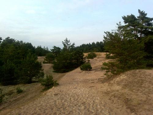 Ullahau naturreservat.