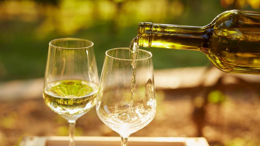 Läsaren vill ha tips på ett vin som passar bra till en bärtårta.