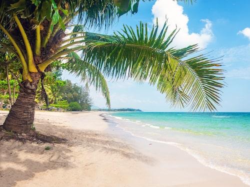 Nej, det går inte att doppa tårna i vattnet. Men annars kan du få en rätt bra beachkänsla virtuellt.