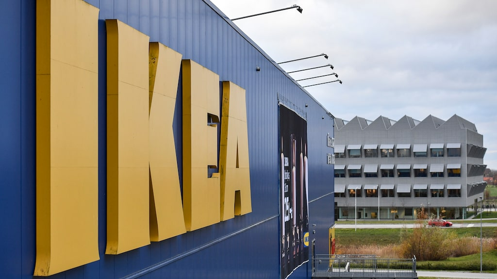 I den italienska staden Catania på östra Sicilien får Ikea-besökarna korsa mellan fyrfotade soffmysare och mattsovare – i alla fall när vädret tryter.