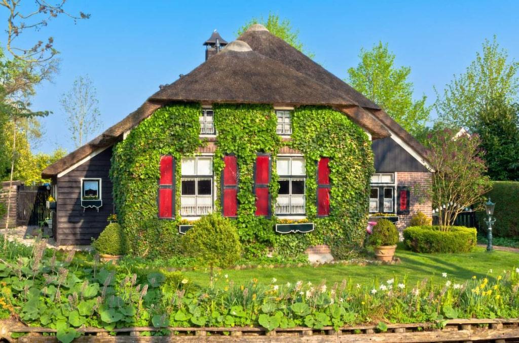 <p>Det är de docklika husen och kanalerna som lockar människor från hela världen till den lilla staden.</p>