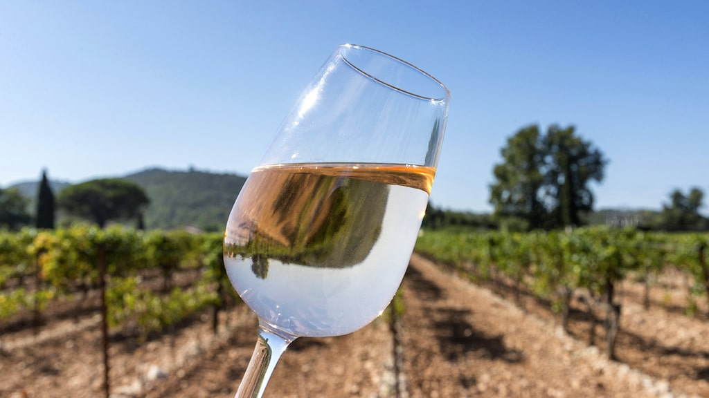 Många av de riktigt ljusrosa rosévinerna som säljer mest kommer från den franska vinregionen Provence.