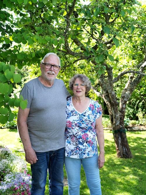 Sören och Anette under äppelträdet Tansparante Blanche som alltid brukar ge riklig skörd.
