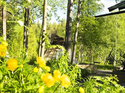 Fjällträdgården visar fjällens växter i olika miljöer som Videkärret, Fjälltoppen och Taigan.