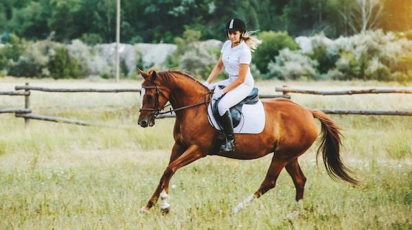 Tillbringa semestern på en hästgård.
